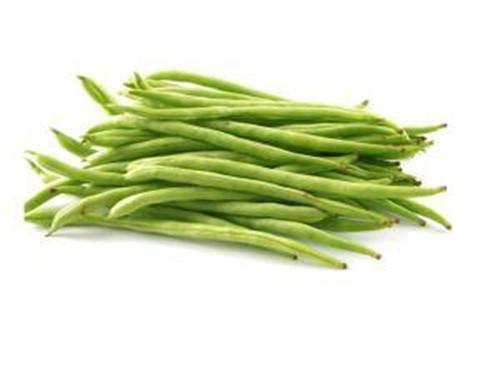 乐虎app蔬菜批发市场