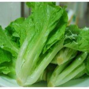 乐虎app蔬菜价格