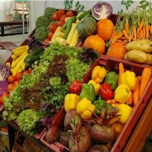 lehu6农产品批发市场